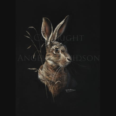 Angela Davidson Art Hare Today...