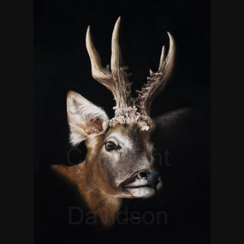 Angela Davidson Art Taking Stalk