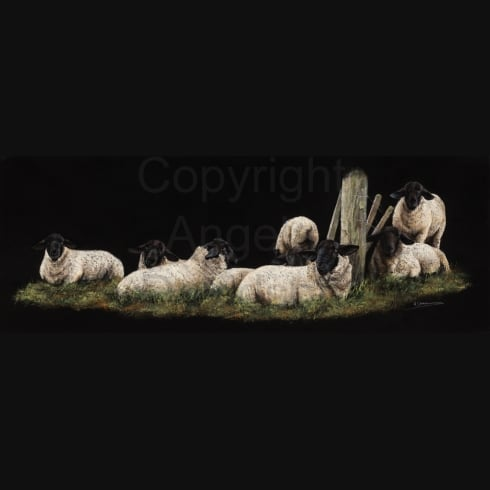 Angela Davidson Art Waiting For Ewes