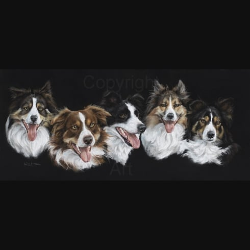 Angela Davidson Art COLLIE WOBBLES