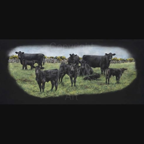Angela Davidson Art Black Coos